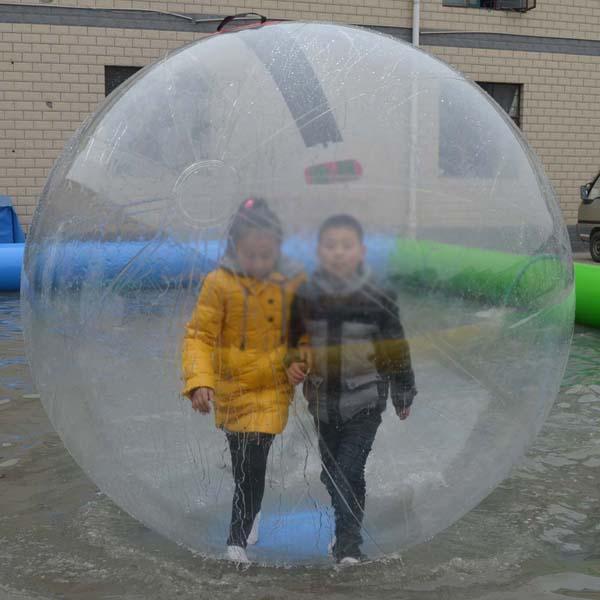 Giant Human Sized Hamster Ball