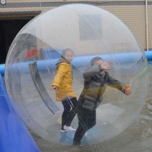Giant Human Sized Hamster Ball Picture 2